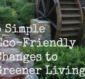 Looking to be a bit more greener? These 5 eco-friendly changes don't cost extra time or extra money; many can save you money! #client #greenworks