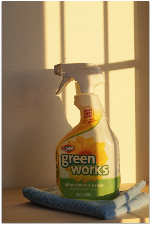 Spring Clean with @GreenWorks Cleaner #client