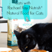 healthy Eating for Cats with Rachael Ray Nutrish Natural Food for Cats #client