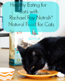 Healthy Eating for Cats with Rachael Ray Nutrish®
