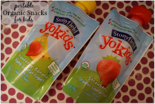 Stonyfield YoKids Pouches: A Portable Organic Snack for Kids