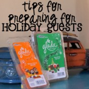 Tips for Preparing for Holiday Guests