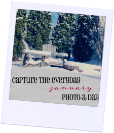 Capture the Everyday during 2015 by taking a photo a day! #photoaday #weekinthelife #monthinthelife