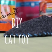 Making a cat toy is easier than you think! Check out this simple tutorial and make your own cat toy today! #IAMSCat AD