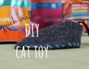 How to Make a Cat Toy