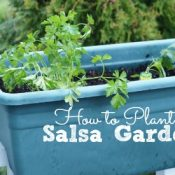Learn how to plant a salsa garden in time for summer parties! #allEssentials AD