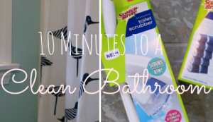 Holiday Prep:: Get a Clean Bathroom in 10 Minutes