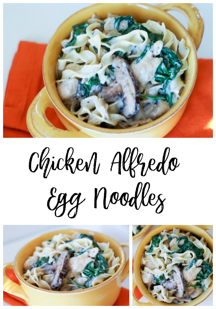 Follow this simple recipe for Chicken Alfredo Egg Noodles to make this delicious comfort food for your family in under 20 minutes.