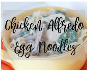Simple and Delicious Chicken Alfredo Egg Noodles